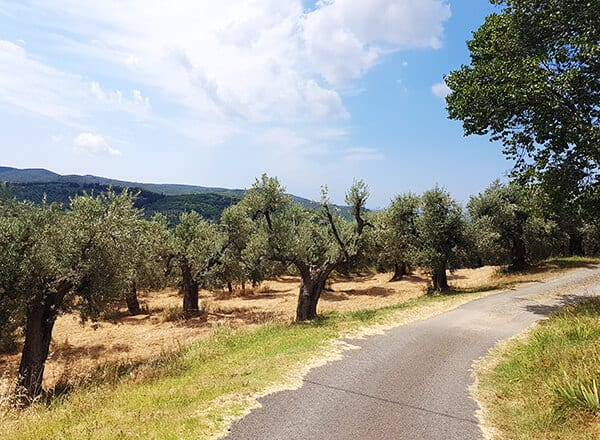 Cestovanie po Taliansku - Toscana